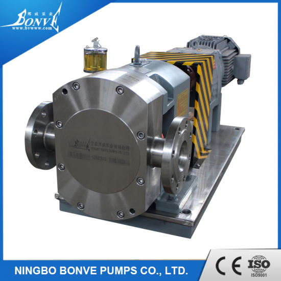 Stainless steel lobe pumps